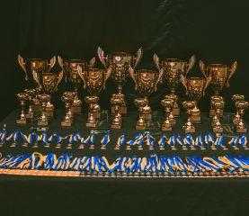награды4
