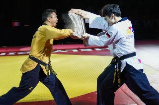 World TKD 2015 (12.05.2015) Opening Ceremony-129